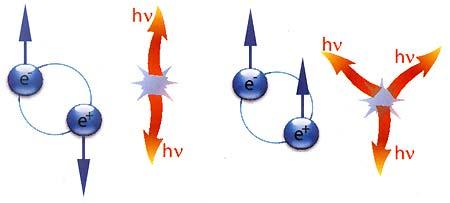 Позитрон и электрон вместе могут образовать подобие атома водорода, где роль протона выполняет позитрон. Такой «атом» называют позитронием. Просуществовав ничтожную долю секунды, позитроний аннигилирует с образованием двух или трёх фотонов, в зависимости от того, как были сориентированы спины частиц в позитронии